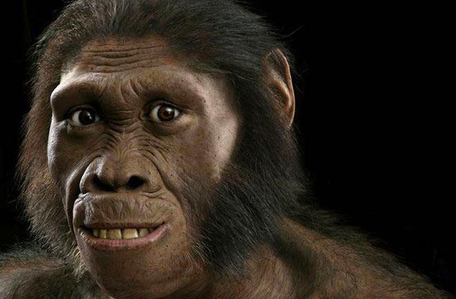 new-human-ancestor-homo-naledi