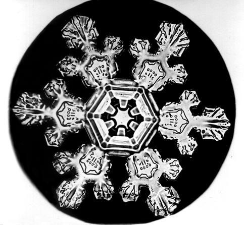 bentley-snowflake
